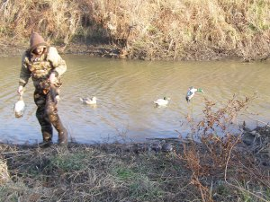 The A, B, C's of Duck Hunting