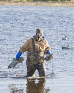 Decoy Spread Tips for Duck Hunting in Missouri