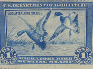 The Federal Duck Stamp History and Costs